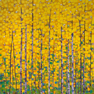 Yellow Birch Trees